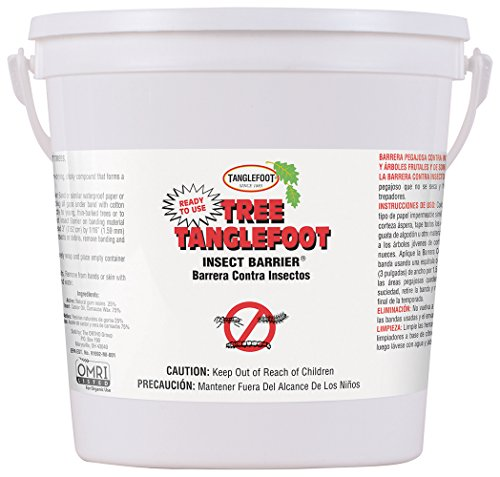 Price comparison product image Tanglefoot Tree Insect Barrier Pail,  5 LB