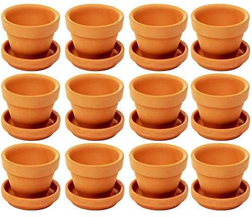 Kleine Terrakotta-Blumentöpfe von Juvale (12 Stück) - Mit Bodenloch und Unterteller - Ideal für kleine Zimmerpflanzen, Balkon- und Terrassenpflanzen, Ableger und Zöglinge - Braun, 6,8 cm x 6,3 cm