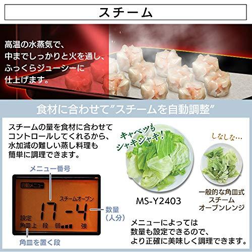 アイリスオーヤマスチームオーブンレンジ24Lタンク式フラットテーブルヘルツフリー自動メニュートーストグリル発酵モードホワイトMS-Y2403