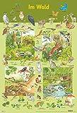 Mein Lernposter: Im Wald - Christine Henkel