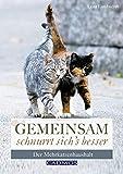Gemeinsam schnurrt sich's besser: Der Mehrkatzenhaushalt - Lena Landwerth