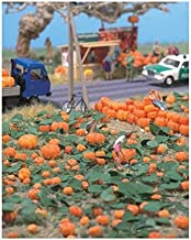 Walthers Pumpkin Patch - Kit - 80 pumpkins (assorted sizes) & eight vines