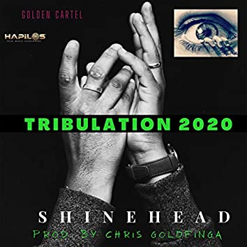 Truibulation 2020