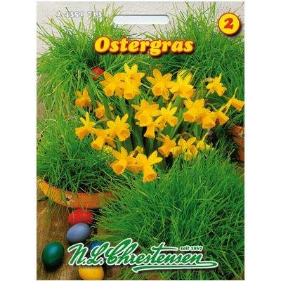 Ostergras (Portion)