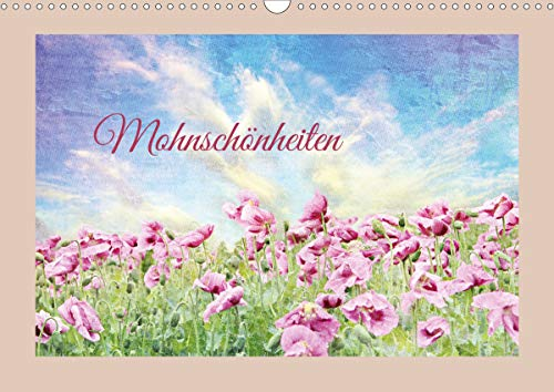 Mohnschönheiten (Wandkalender 2021 DIN A3 quer)