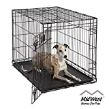 Dog Crate | MidWest Life Stages 36' Folding Metal Dog Crate | Divider Panel, Floor Protecting Feet, Leak-Proof Dog Tray | 36L x 24W x 27H Inches, Intermediate Dog Breed