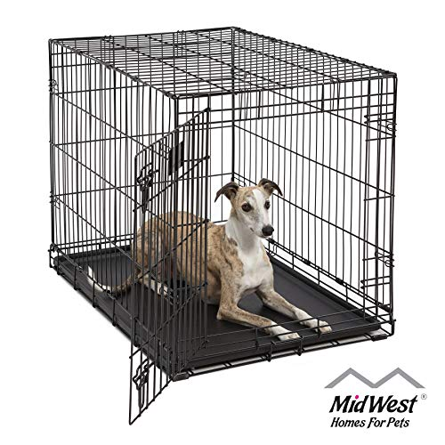"Dog Crate | MidWest Life Stages 36"" Folding Metal Dog Crate 