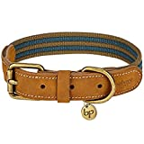 Blueberry Pet 8 Colors Soft & Comfy Genuine Leather & Polyester Combo Adjustable Dog Collar - Classic Staple Striped in Navy and Olive, Medium, Neck 15'-18'