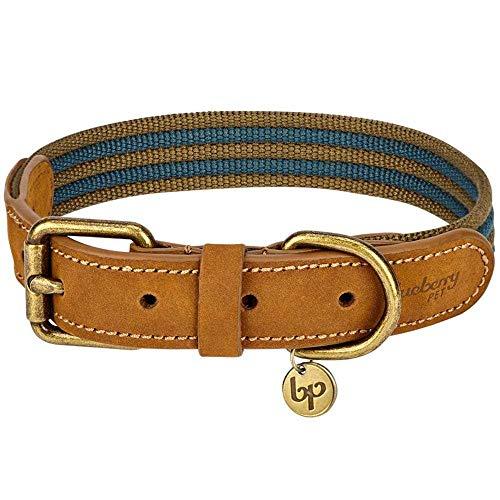 Blueberry Pet Klassisches Gestreiftes Basis Echtleder Hundehalsband in Marineblau und Khaki, S, Hals 30,5cm-38cm