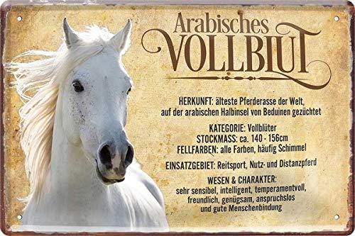 N / A Arabisches Vollblut Pferd Horse Steckbrief 20 x 30 cm Spruch Blechschild Blech 426