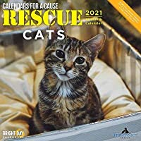 2021救助猫の壁カレンダー 12 x 12インチ 子猫のカレンダー