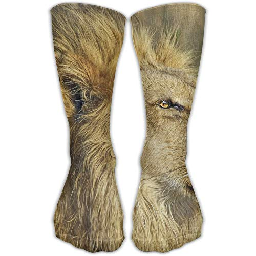 Zome Lag Calcetines Unisex Classics Wildlife Safari Lion Animal King Uhd Medias Atléticas Calcetín Largo