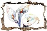Tatuaje de pared en 3D agujero de la pared Sticker Hermosa pintura de flores Pegatina Adhesivo Calcomanía Decoración para dormitorio o la sala de estar 80x125cm