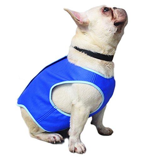 DAVIDLEE - Chaleco de refrigeración para Perros