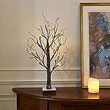 Luces de árbol de ramitas nevadas a batería con 24 LED blancos cálidos Decoración de árbol de Navidad de mesa para uso en interiores (60 cm)