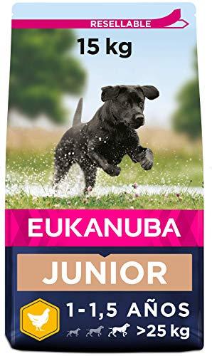 Eukanuba Alimento seco para perros jóvenes de raza grande, rico en pollo fresco 15 kg