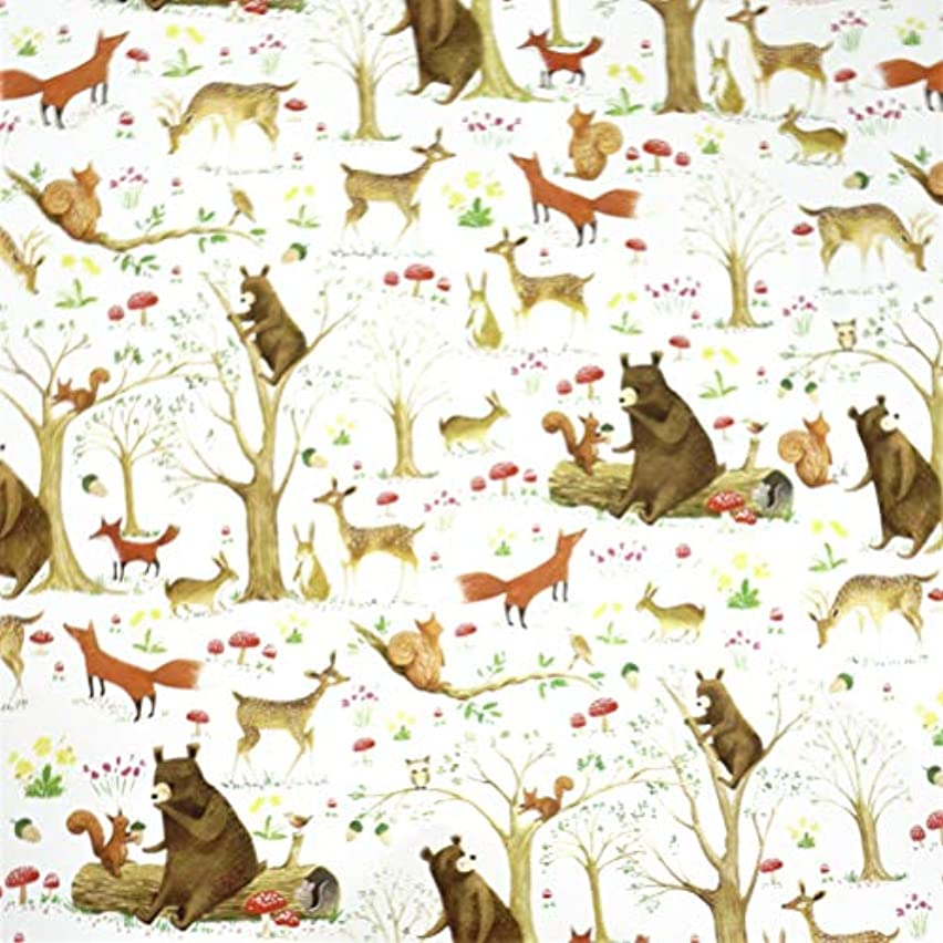 Woodland Forest Animals Gift Wrapping Paper Roll - 24