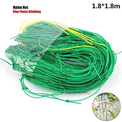 Poluka Garden Netting Nylon Trellis Green Netting Support Climbing Bean Plant Nets Grow Mesh Fence Netting Climbing Vine Net for Vegetables Fruit Pea Bean,1.8x1.8M