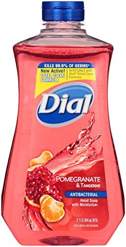 Dial Antibacterial Liquid Hand Soap Refill, Pomegranate & Tangerine, 32 Fluid Ounces