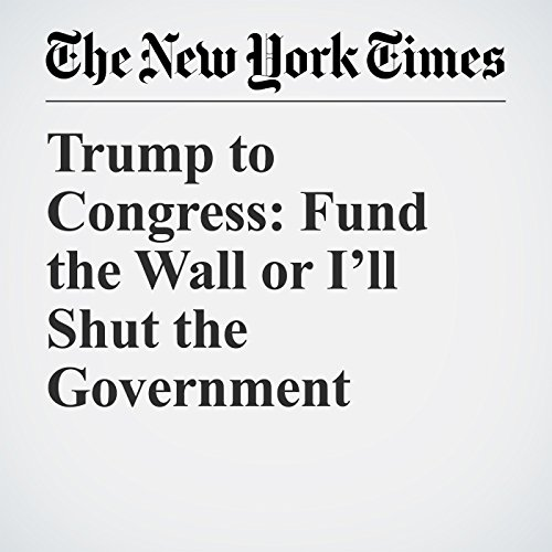 Trump to Congress: Fund the Wall or I'll Shut the Government copertina