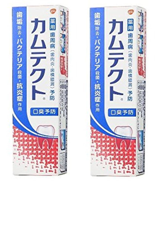 顔料歯車軽蔑【まとめ買い】カムテクト 口臭予防 歯周病(歯肉炎?歯槽膿漏) 予防 歯みがき粉 105g × 2個