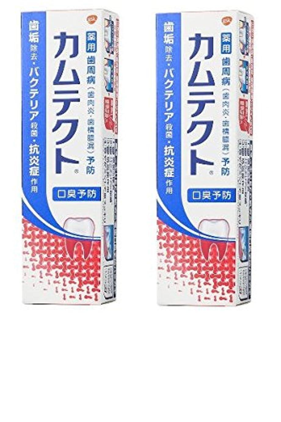 特権植物学リビジョン【まとめ買い】カムテクト 口臭予防 歯周病(歯肉炎?歯槽膿漏) 予防 歯みがき粉 105g × 2個
