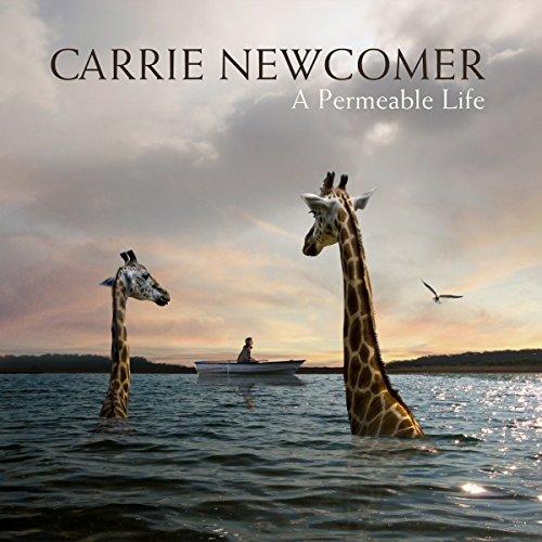 A Permeable Life (Vinyl) [Vinyl LP]