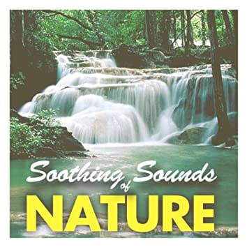Soothing Sounds of Nature