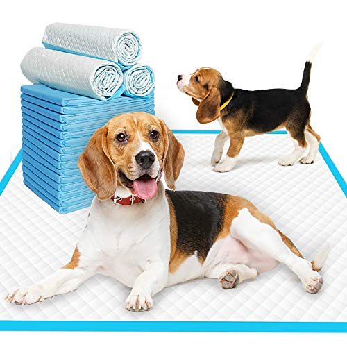 dog pee pads without attractant
