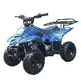 X-PRO 110cc ATV Quads Youth ATV Quad ATVs 4 Wheeler (Spider Blue)
