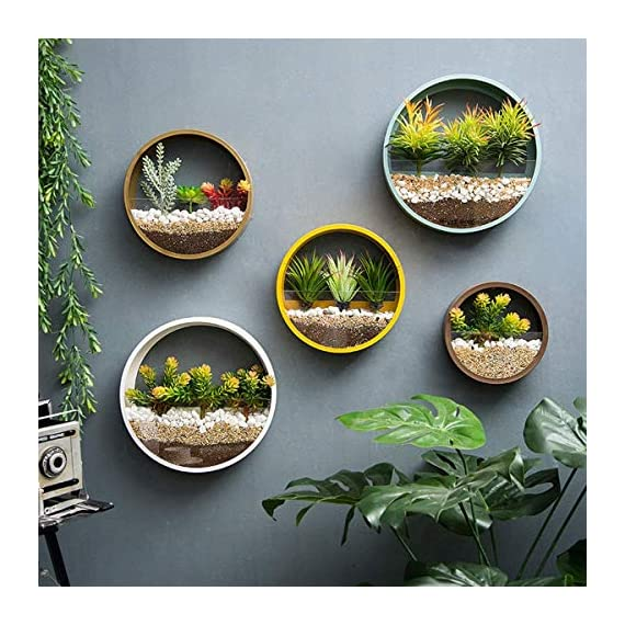 ZEETOON 3 Pack Set Modern Wall Planters Succulent Planter Circle Metal Flower Pot Indoor Air Plant Vertical Container Hanging Vase Home Decoration Size S,M,L Black, with 3 Artificial Succulent Plants 4 MATERIAL: Stabilized iron alloy metal with powder coating ensures long lasting color and withstands extreme weather conditions. Tempered and limpid glass feasts your eyes, add visual intrigue to this wall hanging. Do not rust and no unpleasant smell. PLANTS: Great for succulent plants, air plant, mini cactus, faux plants, artificial plant. It also works for mint, herbs, basil, ivy, flowers, climbing plants, evergreens. The possibilities are only limited by your imagination; display them in a wall hook plant holder, a wall mount, a geometric glass vase, or even in a live wreath. They can even make the perfect desk centerpiece for your office. IDEAL: ZEETOON Wall Vase Perfect for displaying your favorite hanging plants, this wall holder is a basic piece that will fit perfectly anywhere. Outdoor or indoor, kitchen, bedroom, great garden shed decor, farmhouse style wall decor, front entry way, or mounting on bathroom.