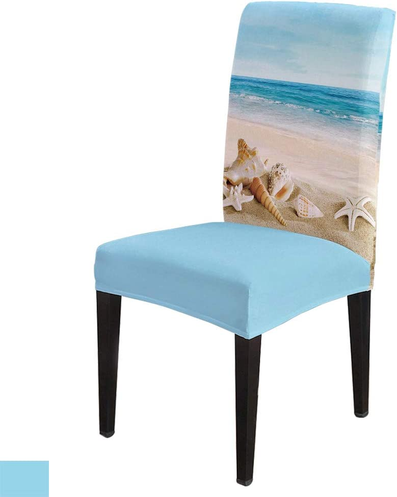 excellence 8 PCS Luxury goods Stretch Washable Chair Bl Starfish Summer Beach Slipcovers