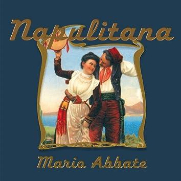 Napulitana No.7
