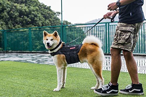 1T OneTigris Molle - Gilet traspirante per cani, regolabile, per cani di taglia media e grande