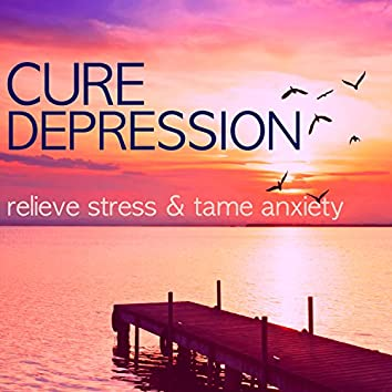 Cure Depression - Relieve Stress & Tame Anxiety on the Workplace, Office Zen