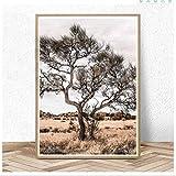 Tela De Lienzo 60x90cm Sin Marco Australiano paisaje interior pintura desierto árbol Boho decoración cartel grande