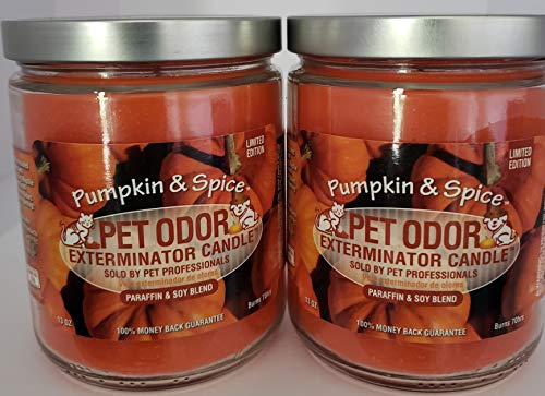 SPECIALTY PET PRODUCTS Pet Odor Exterminator Candle, Pumpkin Spice - Pack of 2