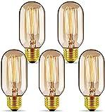 5x Ampoule LED Edison,GreenSun E27 40W T45 Edison Rétro Lampe Antique Vintage Incandescence Ampoules Poire à cage d'écureuil Filament Ampoule LED Vintage Lampe Décorative