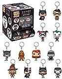 Funko Llavero Pocket Pop DC Comics Batman Animated Blindbags...