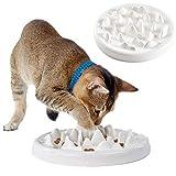 Interactive Cat Feeders