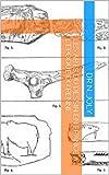 Les Arts du dessin en France à l'époque du renne (French Edition)