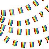 Juego de Banderas del Orgullo Gay de 20 Piezas Banderas de Arcoíris de LGBT Guirnalda de...