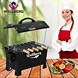 Wellberg Electric & Charcoal BBQ Grill & Tandoor Portable Barbecue, Stainless Steel Grill