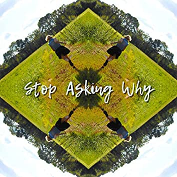 Stop Asking Why (feat. Turtle)