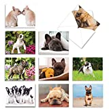 The Best Card Company - 10 Adorable Blank Dog Cards (4 x 5.12 Inch) - Assorted Pet Breeds, Boxed Set - Beautiful Bulldogs AM6298OCB-B1x10