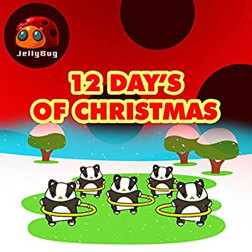 12 Day's of Christmas
