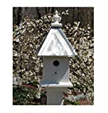 Pour Joy Wooden Bird House, 1 Hole, Burnished Aluminum Roof, Handmade in The USA, Weather Resistant (1 Hole Burnished Roof)