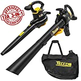 Best Leaf Vacuums - TECCPO 3-in-1 Blower/Vacuum/Mulcher, 12 Amp Professional Leaf Blower Review