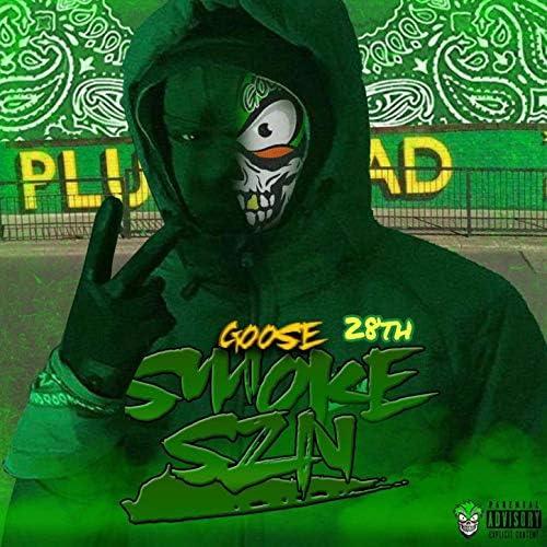Goose 28th