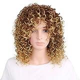 Tsnomore African American Brown Shoulder Length Afro Big Curly Women Wig (Brown)